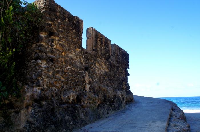 Puerto Rico Es Un Campo DeBatalla